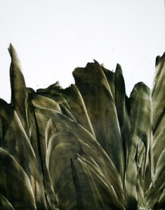 Sage Végétal 3